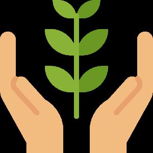 Protégez l'environnement à Paris
